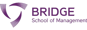 bridgesom-logo-big